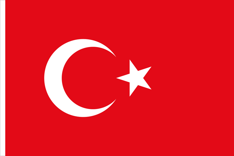 Turkey – FDI Screening Practical Q&A Overview